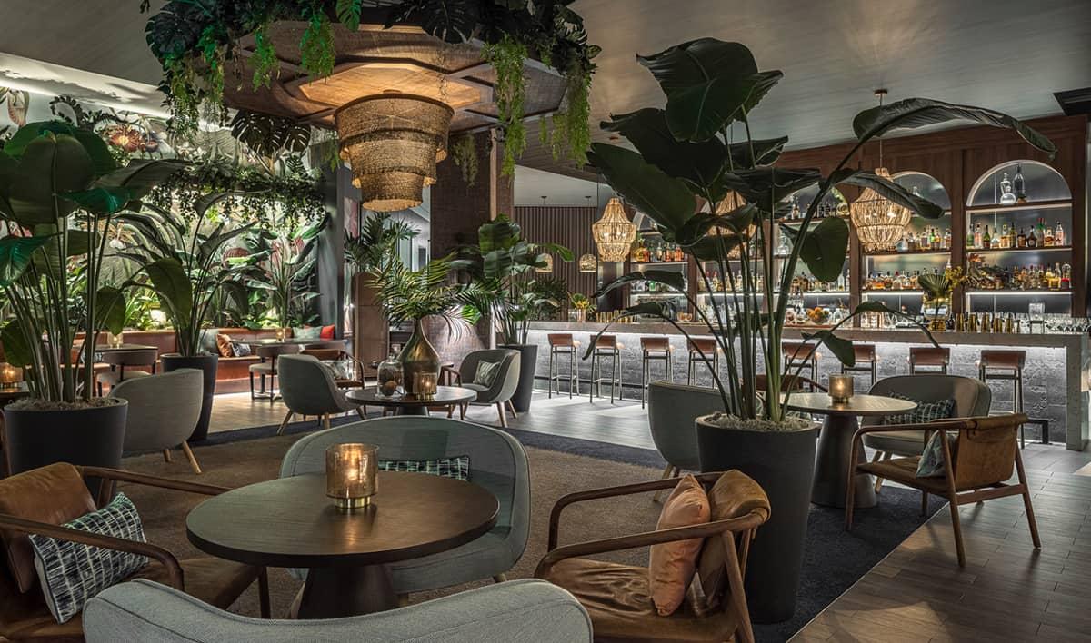 THesis_Hotel_Miami_Mamey
